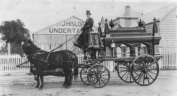 undertakers-horse