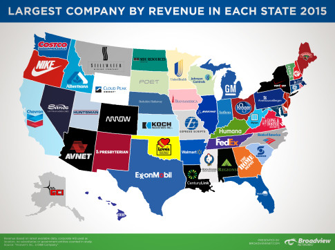 BVN-Largest-Companies-by-Revenue-20152