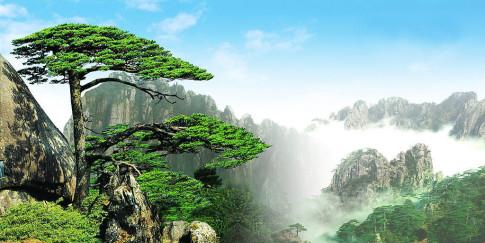 HuangShan-China-2
