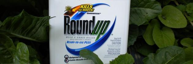 Roundup-08