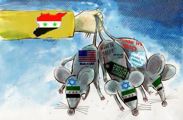 syrian-rats