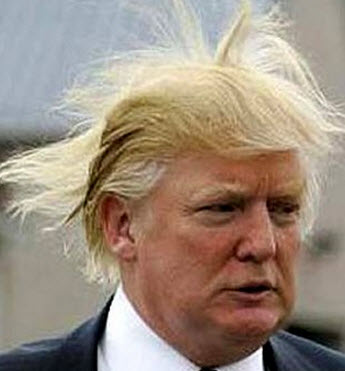 Donald-Trump-hair3