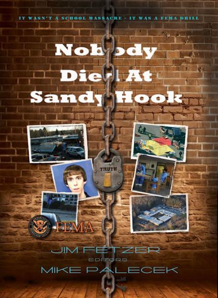 Nobody-Died-At-Sandy-Hook-500