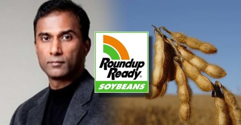 Scientist-Offers-Monsanto-10M-to-Prove-Him-Wrong-on-Ominous-Findings-in-GMO-Soy