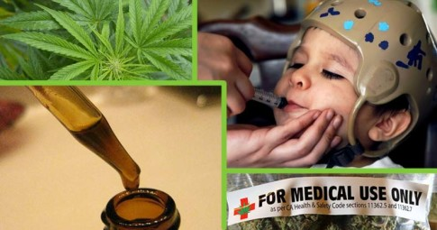 First-of-Its-Kind-Study-Shows-Marijuana-Extract-Obliterates-Seizures-in-Epileptic-Children