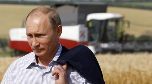 Putin-No-GMO-Food