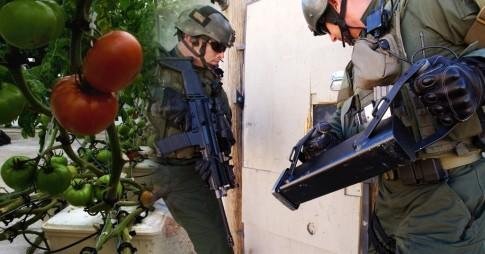 swat-raid