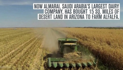 Saudi Arabia is Buying Up American Farmland to Export Agricultural Products Back Home
