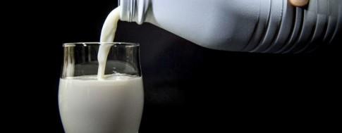 milk-fluoride