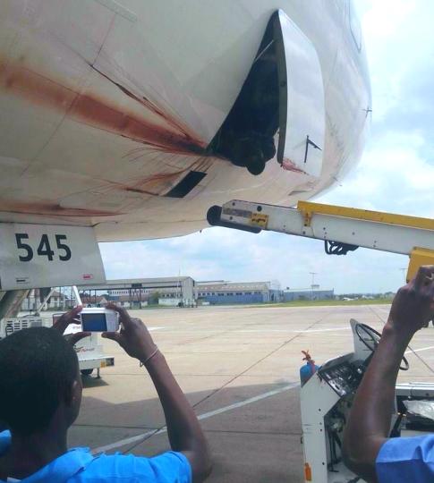 plane-blood
