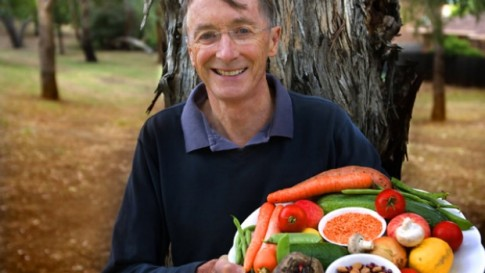 apricot kernels cancer vitamin b17 laetrile