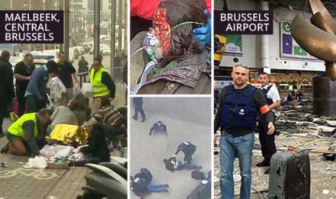 brussels-654528