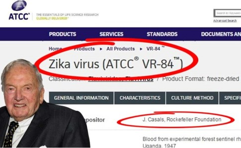Why-does-the-Rockefeller-Foundation-hold-a-patent-on-the-Zika-virus