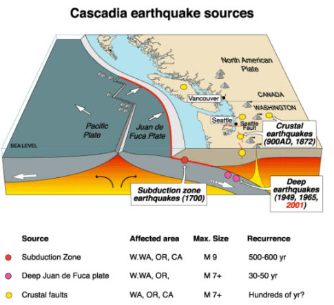 FEMA Preparing For Magnitude 9.0 Cascadia Subduction Zone Earthquake, Tsunami-1