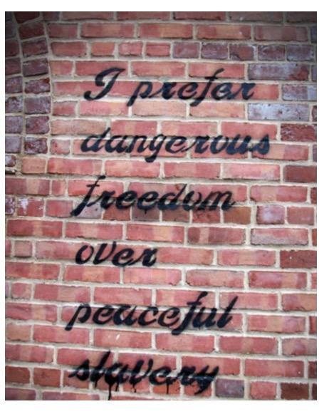 freedom-slavery