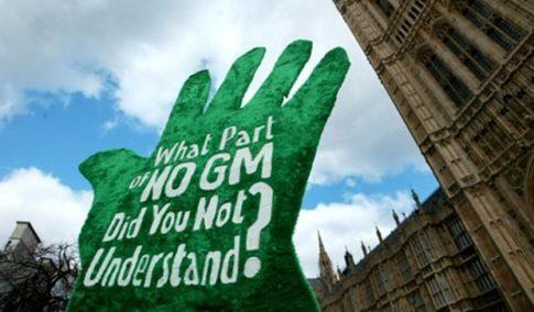 GMO-crops-europe