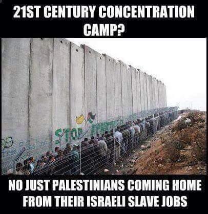 Israel-Palestine-Job