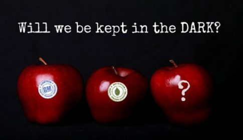 apples-GMO-DARK-Act