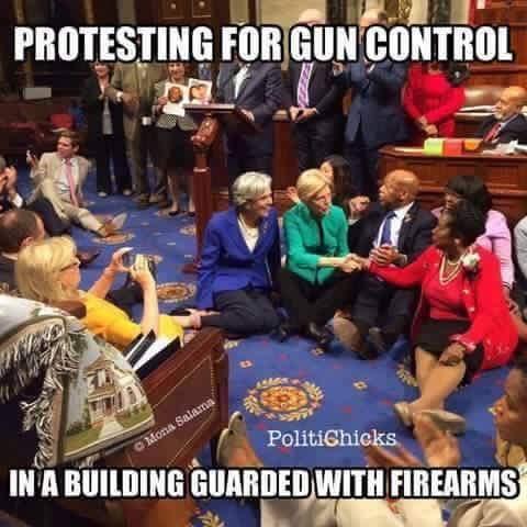 gun-control-guns-wtf