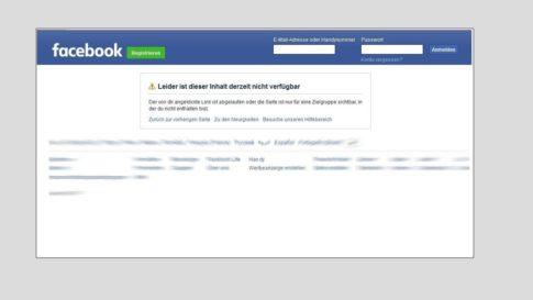 Facebook-Ulfkotte