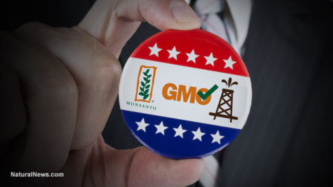 Vote-Button-Monsanto-GMO-Fracking