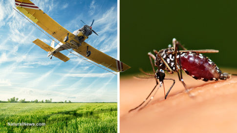 Pesticide-Crop-Spray-Mosquito