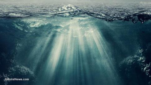 underwater-ocean